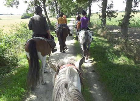 Horse and pony trekking holidays and vacations travel directory